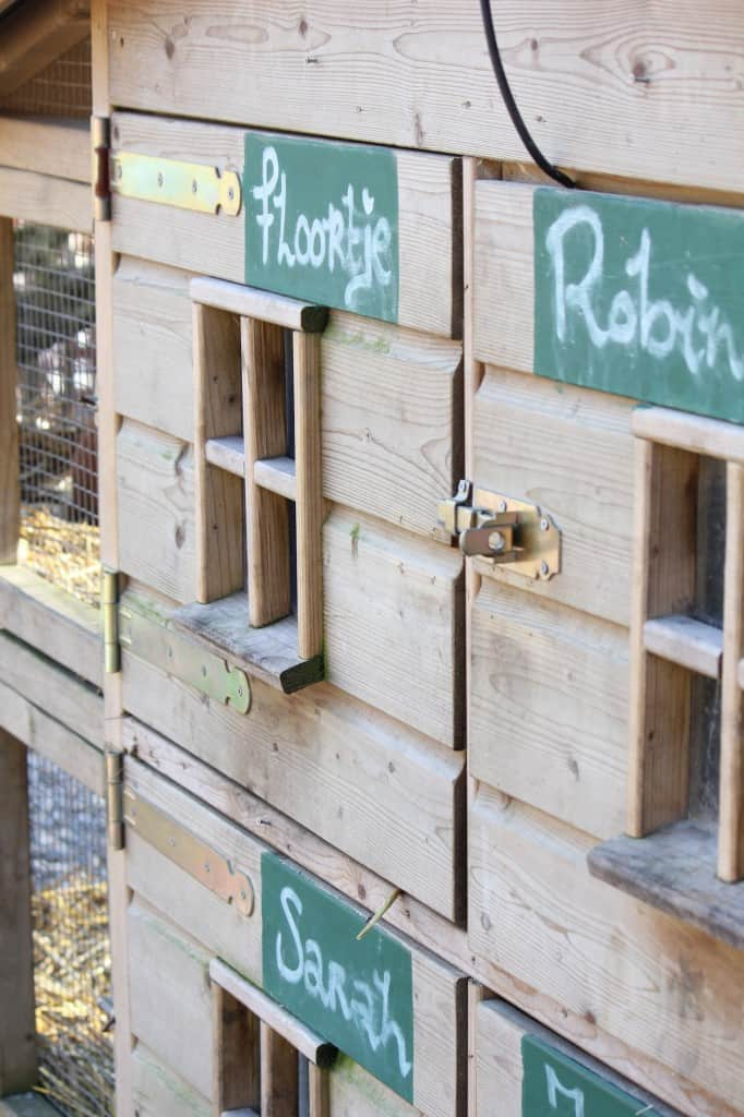 Gasterij Kruisberg konijnen
