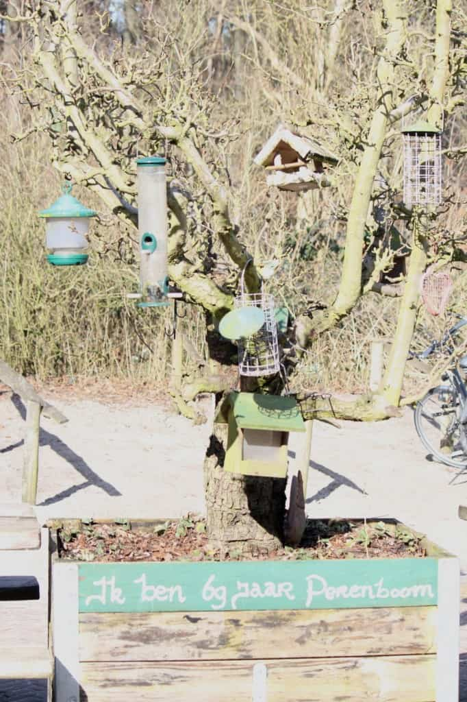 Gasterij Kruisberg perenboom
