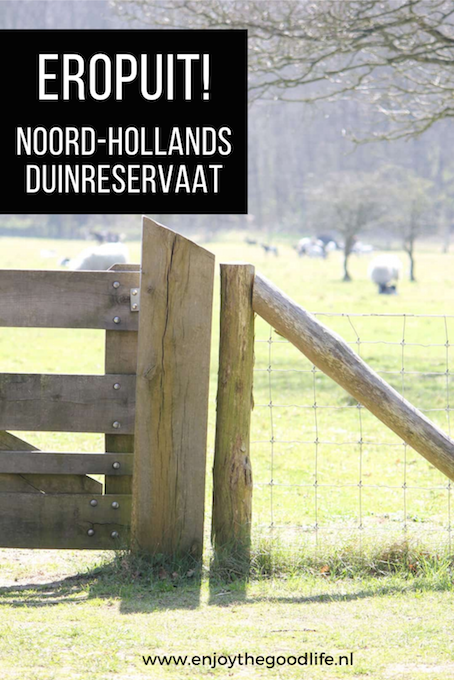 Het Noord-Hollands Duinreservaat | ENJOY! The Good Life