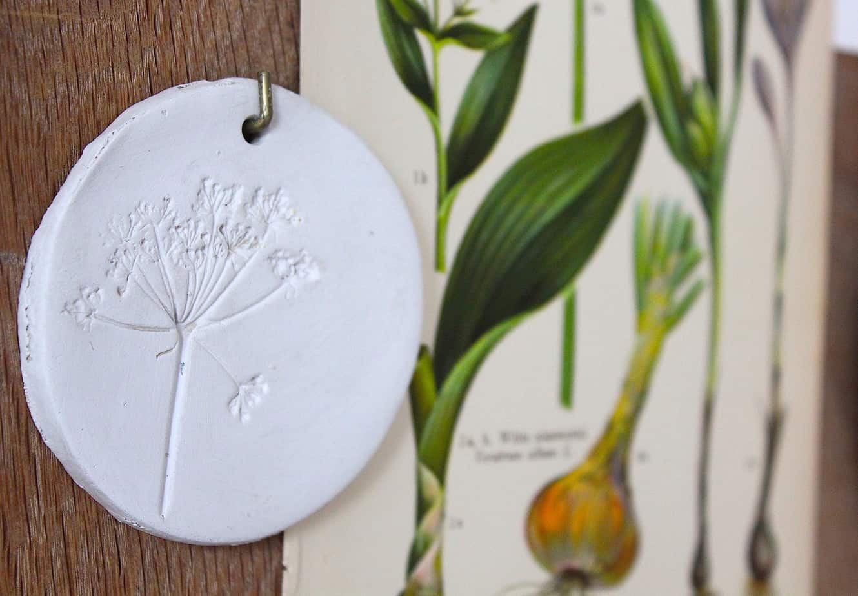 DIY: Botanische wandbordjes