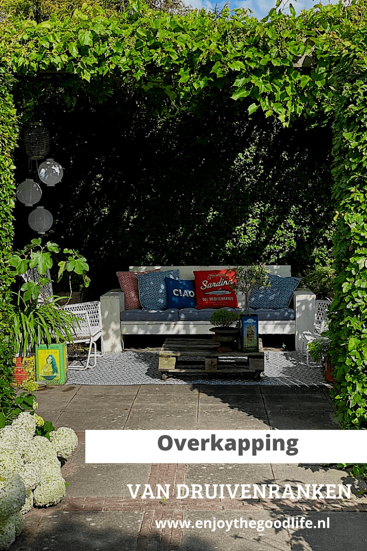 Overkapping van druivenranken | ENJOY! The Good Life