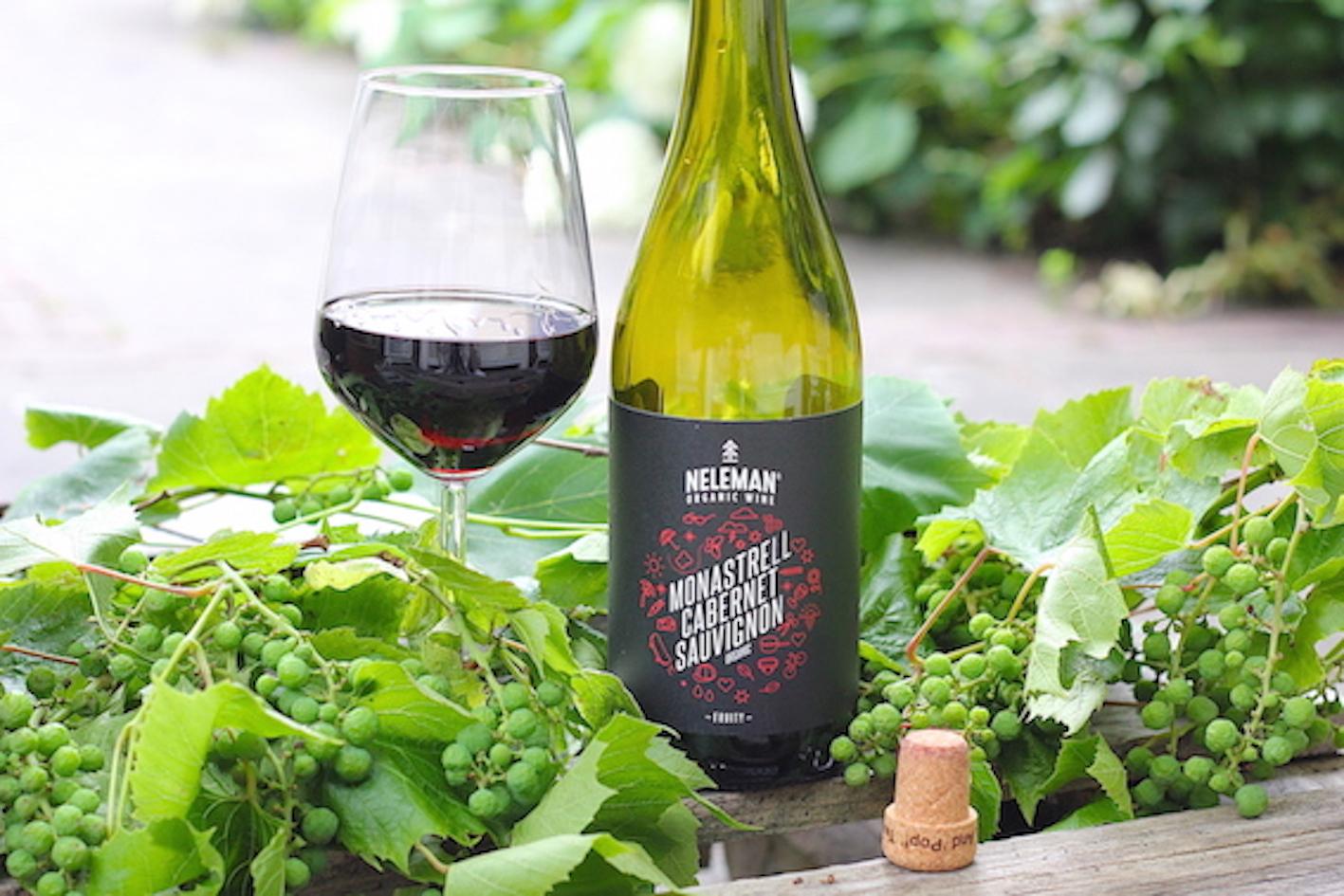 Neleman wijnen van de HEMA | ENJOY! The Good Life